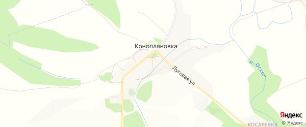 Карта села Конопляновки в Белгородской области с улицами и номерами домов