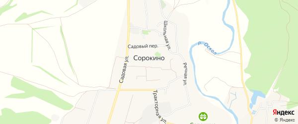 Карта села Сорокино в Белгородской области с улицами и номерами домов