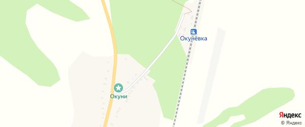 Привольная улица на карте села Окуни с номерами домов