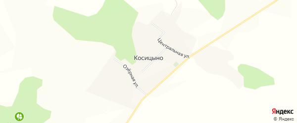 Карта села Косицыно в Белгородской области с улицами и номерами домов