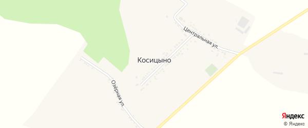 Центральная улица на карте села Косицыно с номерами домов
