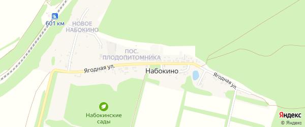 Ягодная улица на карте поселка Набокино с номерами домов