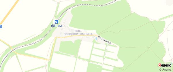 Карта поселка Набокино в Белгородской области с улицами и номерами домов