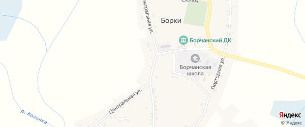 Центральная улица на карте села Борки с номерами домов