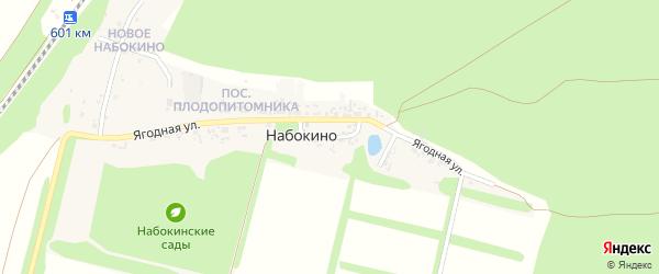 1-й Ягодный переулок на карте поселка Набокино с номерами домов