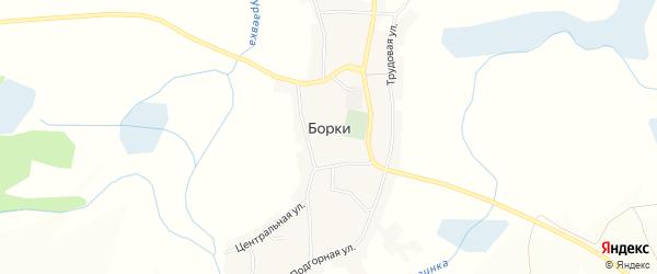 Карта села Борки в Белгородской области с улицами и номерами домов