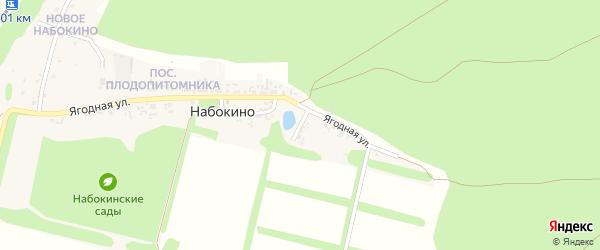 2-й Ягодный переулок на карте поселка Набокино с номерами домов
