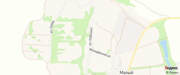 Улица Лобышка на карте Малого хутора с номерами домов