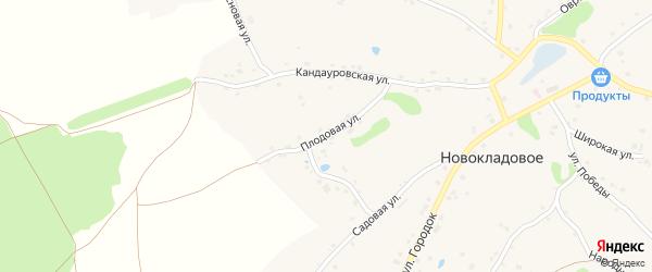 Плодовая улица на карте Новокладового села с номерами домов