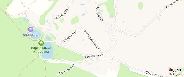 Молодежная улица на карте Новокладового села с номерами домов
