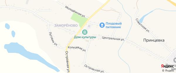 Центральная улица на карте села Принцевки с номерами домов