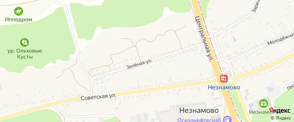 Зеленая улица на карте села Незнамово с номерами домов