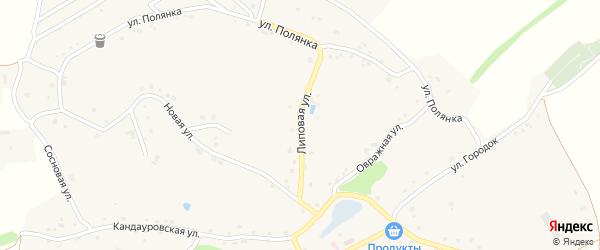 Липовая улица на карте Новокладового села с номерами домов