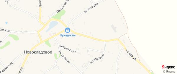 Новая улица на карте Новокладового села с номерами домов