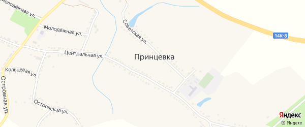 Колхозный переулок на карте села Принцевки с номерами домов