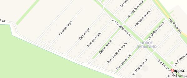 Ясеневая улица на карте села Лапыгино с номерами домов