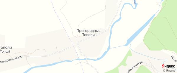 Карта хутора Пригородные Тополи в Белгородской области с улицами и номерами домов