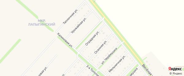 Отрадная улица на карте села Лапыгино с номерами домов