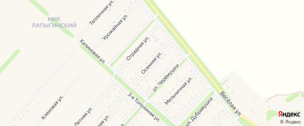 Осенняя улица на карте села Лапыгино с номерами домов