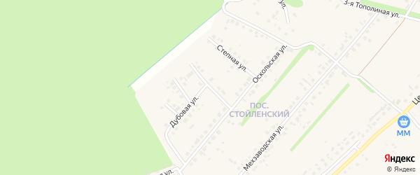 Березовая улица на карте села Лапыгино с номерами домов