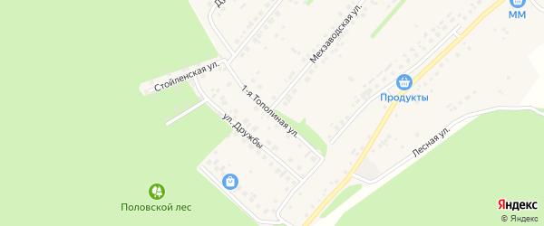 Тополиная 1-я улица на карте села Лапыгино с номерами домов