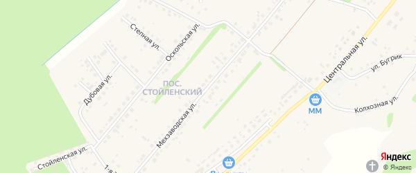 Мехзаводская улица на карте села Лапыгино с номерами домов
