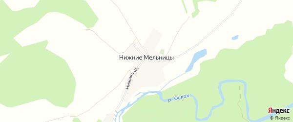 Карта хутора Нижние Мельницы в Белгородской области с улицами и номерами домов