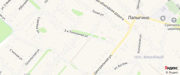 1-й Тополиный переулок на карте села Лапыгино с номерами домов