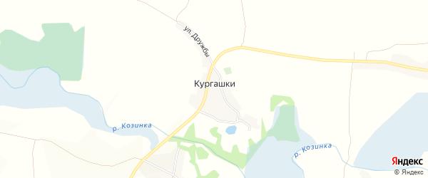 Карта села Кургашки в Белгородской области с улицами и номерами домов