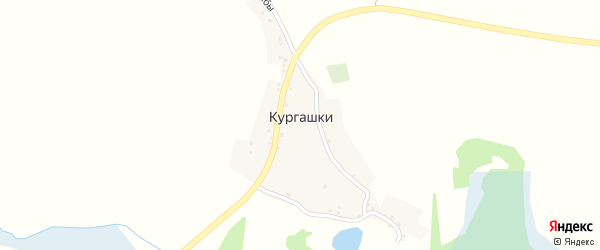 Улица Дружбы на карте села Кургашки с номерами домов