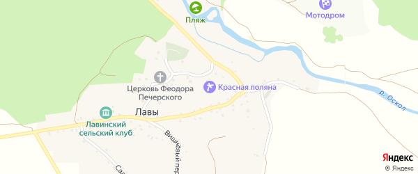 Центральная улица на карте села Лавы с номерами домов