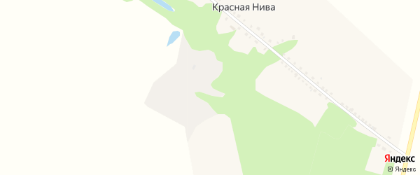 Центральная улица на карте села Красной Нивы с номерами домов