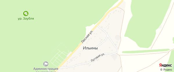 Лесная улица на карте хутора Ильины с номерами домов