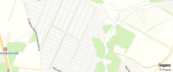 СТ Рябинушка на карте Старооскольского района с номерами домов