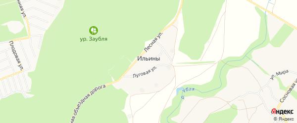 Карта хутора Ильины в Белгородской области с улицами и номерами домов