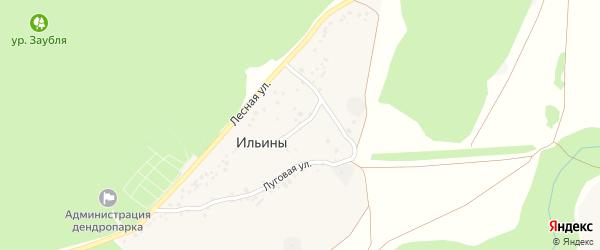 Южный переулок на карте хутора Ильины с номерами домов