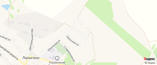 Живописная улица на карте села Лапыгино с номерами домов
