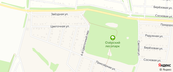 4-й Цветочный переулок на карте села Озерки с номерами домов