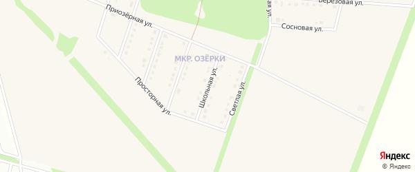 Школьная улица на карте села Озерки с номерами домов