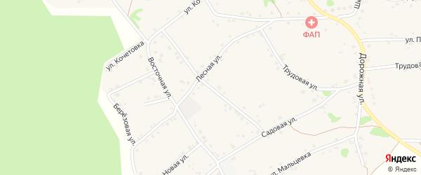Интернациональная улица на карте Курского села с номерами домов