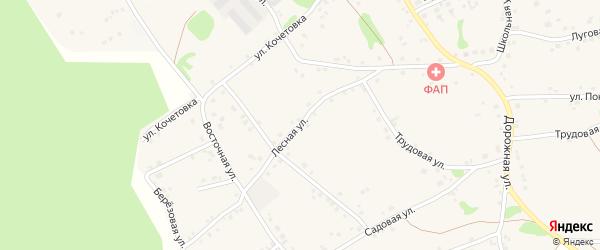 Лесная улица на карте Курского села с номерами домов