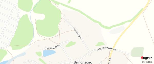 Лесная улица на карте села Выползово с номерами домов