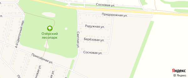 Березовая улица на карте села Озерки с номерами домов