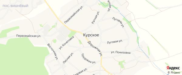 Карта Курского села в Белгородской области с улицами и номерами домов