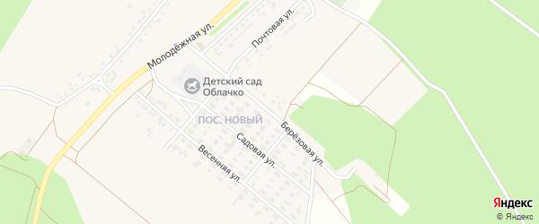 Березовая улица на карте села Котово с номерами домов