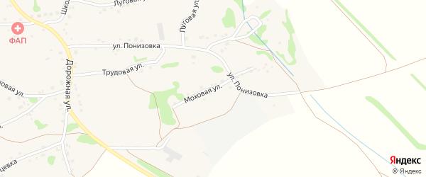 Моховая улица на карте Курского села с номерами домов