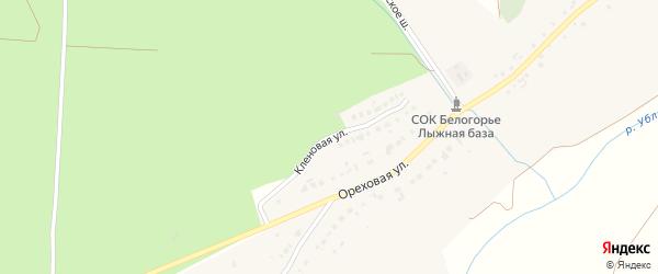 Кленовая улица на карте хутора Чумаки с номерами домов