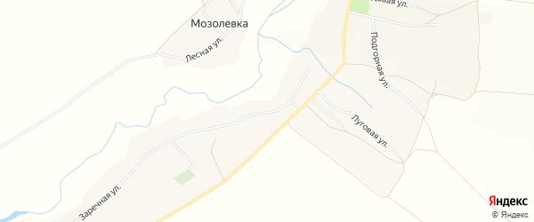 Карта села Шараповки в Белгородской области с улицами и номерами домов