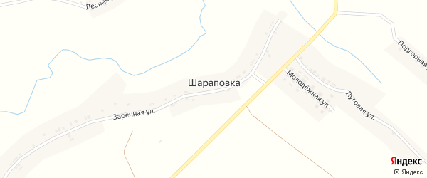 Зелёная улица на карте села Шараповки с номерами домов