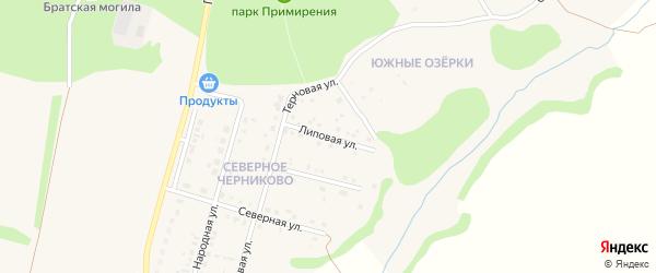 Липовая улица на карте села Черниково с номерами домов